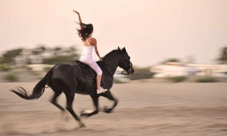 Horseback riding guide