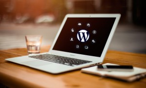 WordPress twenty fifteen